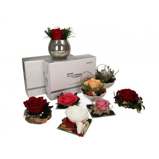 Ekskluzywny filtr prysznicowy-Waters Therapy Shower FULL o zapachu lawendy + GRATIS